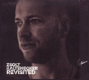 Kaltenecker Zsolt - Revisited